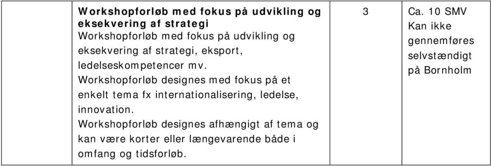 Workshopforløb designes med fokus på et enkelt tema fx internationalisering, ledelse, innovation.