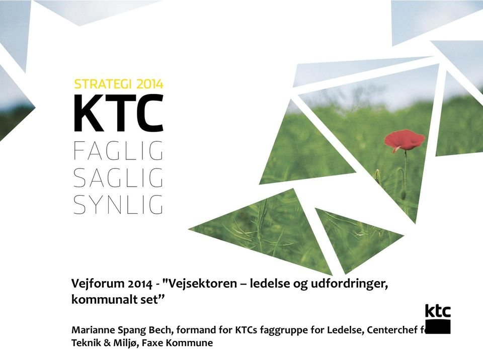 Bech, formand for KTCs faggruppe for