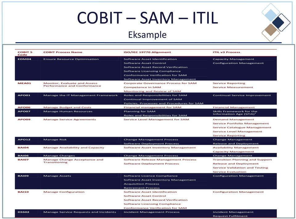 Corporate Governance Process for SAM Competence in SAM Monitoring and Review of SAM Manage the IT Management Framework Roles and Responsibilities for SAM Continual Improvement of SAM Policies,