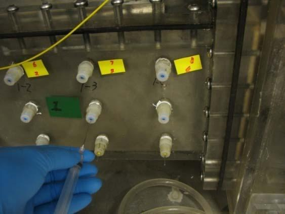 bioaugmentation for remediation of chlorinated solvents