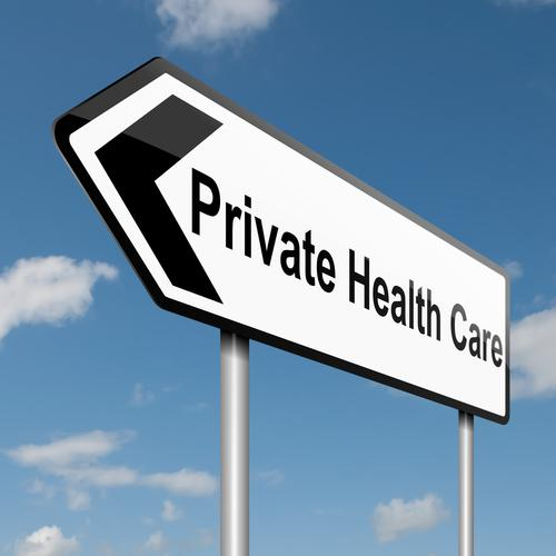 Private Health Market size +30 billion Direct payment or insurance Means tested support for care homes Care