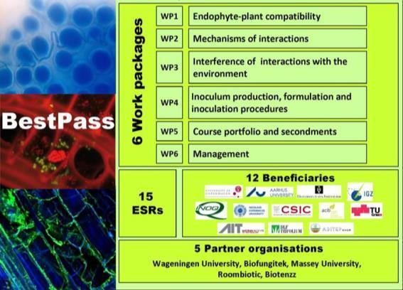 26 BestPass: Boosting plant-endophyte stability, compatibility and performance across scales http://bestpass.ku.