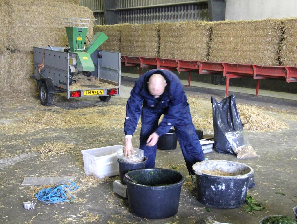 Snitning af hvedehalm Storage of mixtures of beet top and straw - experiment with