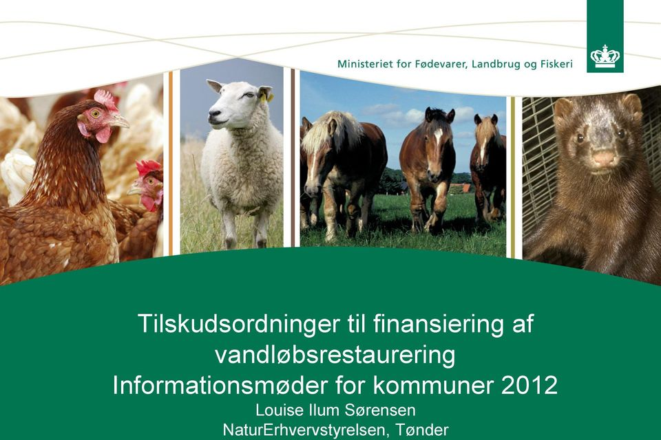 Informationsmøder for kommuner 2012